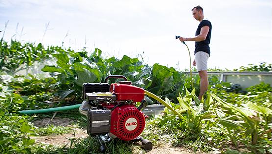Spar vann i hagen | Finn den beste pumpen til formålet